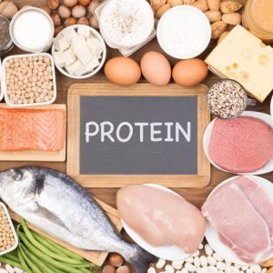 Makanan Protein