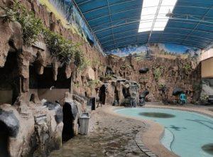 Kolam Renang Tirta Mulya - Padalarang